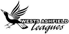 west ashfield leagues logo
